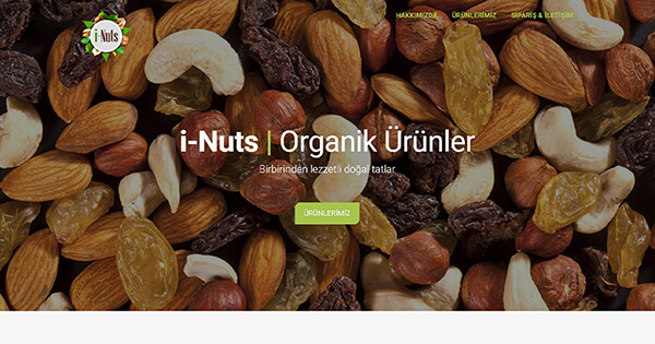 İ-Nuts | ALGORİT IT & Consultancy Project